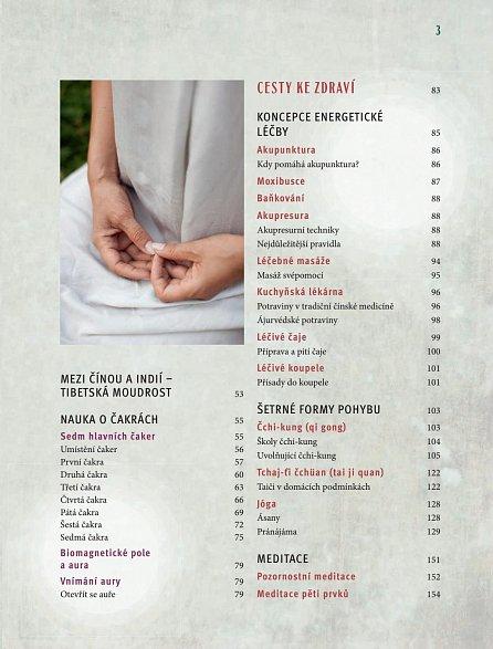Náhled Tradiční východní medicína