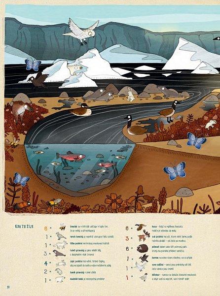Náhled Cesta kolem světa za zvířaty - Z Grónska, přes pouště až do Antarktidy