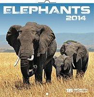 Kalendář 2014 - Sloni - nástěnný poznámkový (ČES, SLO, MAĎ, POL, RUS, ANG)
