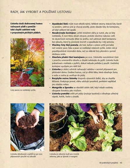 Náhled Praktická zeleninová zahrada