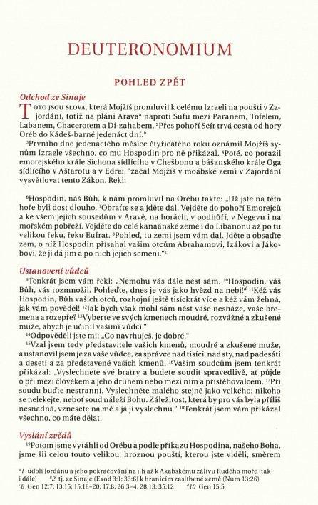 Náhled BIBLE překlad 21. století - charme hnědá