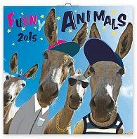 Kalendář 2015 - Funny Animals - nástěnný (GB, DE, FR, IT, ES, NL)/