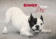 Kalendář nástěnný 2016 - Život je pes