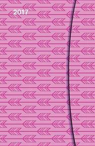 Diář Pink Pattern Magneto 2017 (9 x 14 cm)