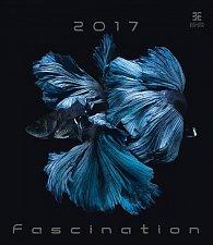 Kalendář nástěnný 2017 - Fascination/Exclusive