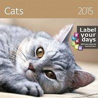 Kalendář nástěnný 2015 - Cats