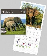 Elephants - nástěnný kalendář 2013