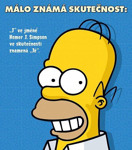 Náhled Simpsonova knihovna moudrosti: Homerova kniha