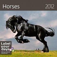 Kalendář nástěnný 2012 - Koně 300x300