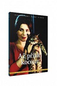 Až přijde kocour/Šest otázek pro Jana Wericha - DVD box