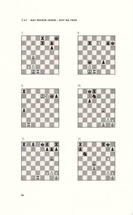 Náhled Šachy - 5334 úloh, kombinací a partií