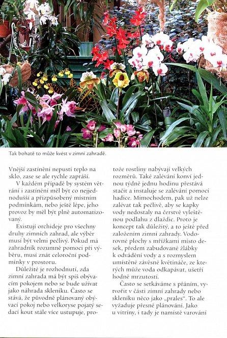 Náhled Orchideje – Výběr a pěstování nejlepších druhů