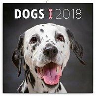 Kalendář poznámkový 2018 - Psi, 30 x 30 cm