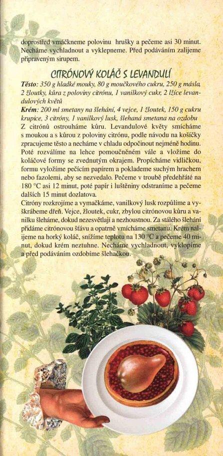 Náhled Kalendář 2017 - Bylinkový + Babiččiny bylinkové recepty