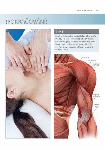 Náhled Masáže - anatomie