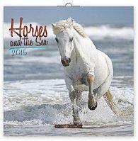 Kalendář 2015 - Koně a moře - nástěnný (GB, DE, FR, IT, ES, NL)