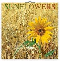 Kalendář 2015 - Slunečnice - nástěnný (CZ, SK, HU, PL, RU, GB)