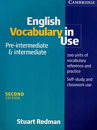 English Vocabulary in Use: Pre-Intermediate and Intermediate: Edition with answers
