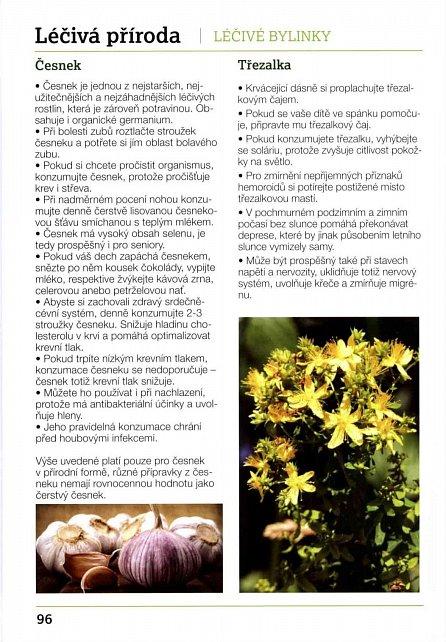 Náhled 1000 tipů pro zdraví - Výživa, léčivá příroda, pohyb, harmonická životospráva