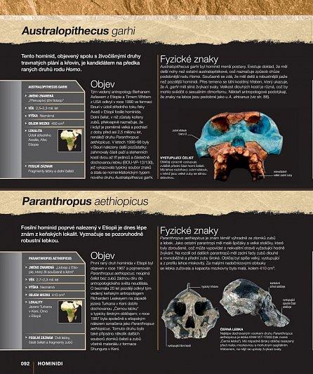 Náhled Evoluce - Příběh člověka