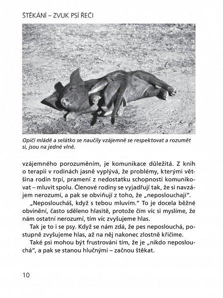 Náhled Štěkání - Zvuk psí řeči