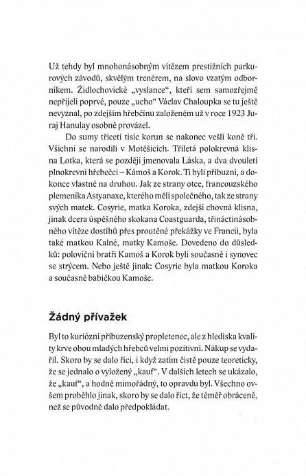 Náhled Dávat koním křídla - Splněné a nesplněné sny Václava Chaloupky