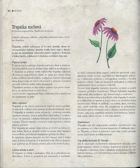 Náhled Vaříme podle Herbáře 2