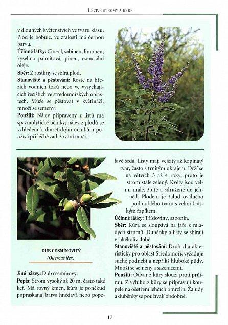 Náhled Léčivá síla rostlin - Užívání, pěstování, účinné látky