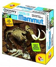 Cesta za mamuty
