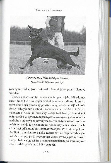 Náhled Krátký návod, jak udělat psa šťastným - 98 základních tipů a technik