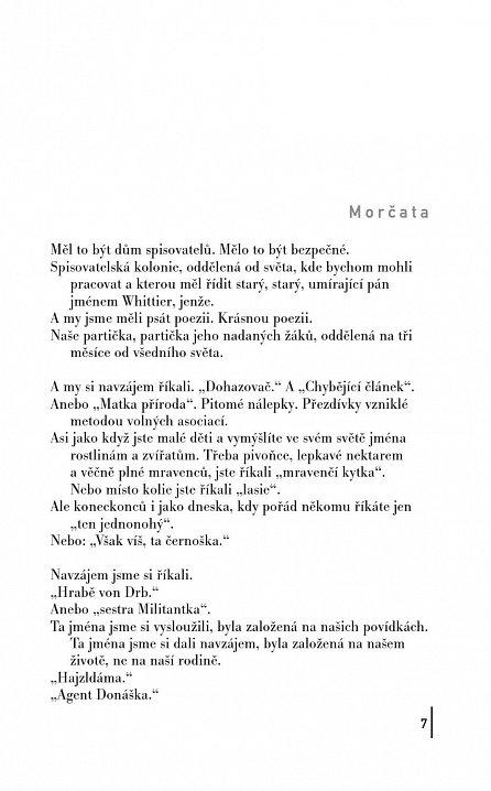 Náhled Strašidla - Román (z) povídek