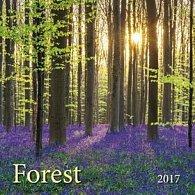 Forest - Les 2017 - nástěnný kalendář