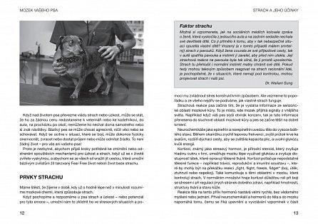 Náhled Od strachu k pohodě - Zbavte svého psa obav z veterináře, návštěv, ohňostrojů…