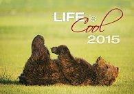Kalendář nástěnný 2015 - Life is...