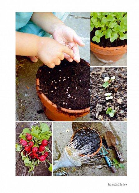 Náhled Zahrada žije – zahradničíme s dětmi