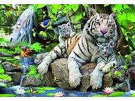 Puzzle Bílý Bengálský tygr 1000d