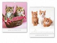 Cats 2016 - nástěnný kalendář