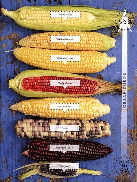 Náhled Pěstujeme dobrou chuť - Rady a finty, jak vylepšit chuť vlastní úrody