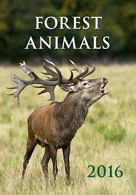 Kalendář nástěnný 2016 - Forest Animals