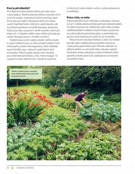 Náhled Moderní zahrada