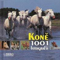 Koně - 1001 fotografií