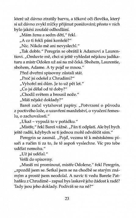 Náhled Případ dětinského dědice a jak jej vyřešil Mistr učení boloňského Peregrin Kameník
