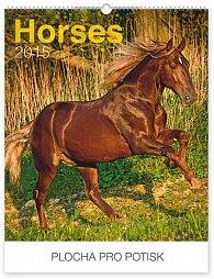 Kalendář 2015 - Koně Praktik - nástěnný s prodlouženými zády