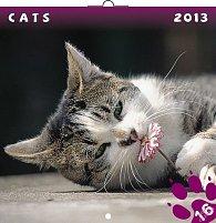 Kalendář 2013 poznámkový - Kočky, 30 x 60 cm