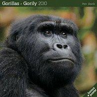 Gorily 2010 - nástěnný kalendář