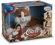 Kočička Cherry