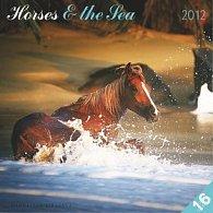 Kalendář nástěnný 2012 - Koně & moře M. Straková,  30 x 60 cm