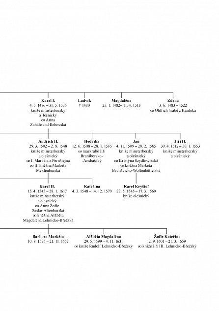 Náhled Jindřich starší z Minsterberka - Syn husitského krále. Velký hráč s nízkými kartami