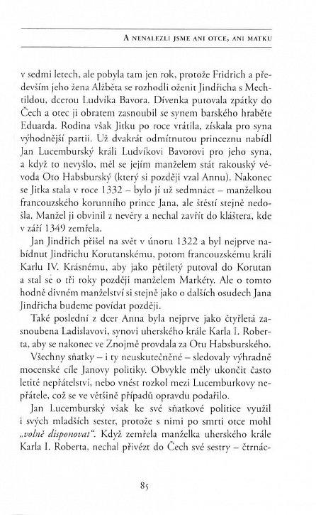 Náhled Vzestupy a pády Karla IV.