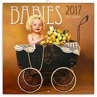 Kalendář poznámkový 2017 - Babies/Věra Zlevorová